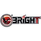 Запчасти к шиномонтажным станкам Bright