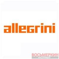 Размораживатель замков+PTFE PTFE Allegrini